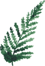 Fern leaf watercolor