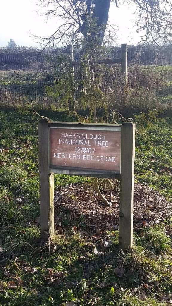 2017-01 Marks Slough cedar tree sign