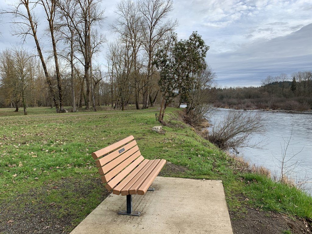 Marks Slough trail bench at South Santiam River