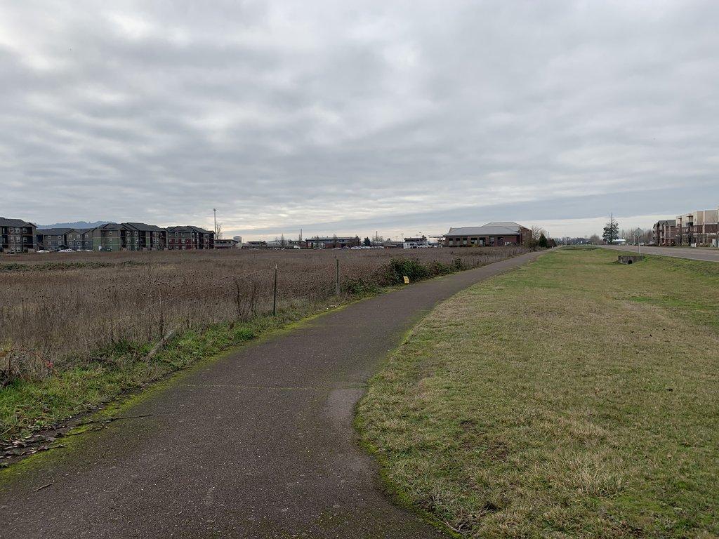 Veterans walk long view