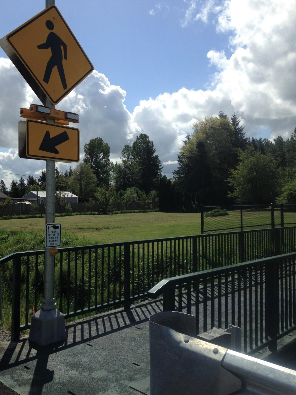 Pedestrian signal at Mountain River Dr